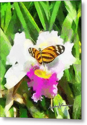 Orchid And Butterfly Metal Print by Anthony Caruso