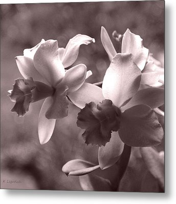 Metal Print featuring the photograph Orchid Dream - Square by Kerri Ligatich