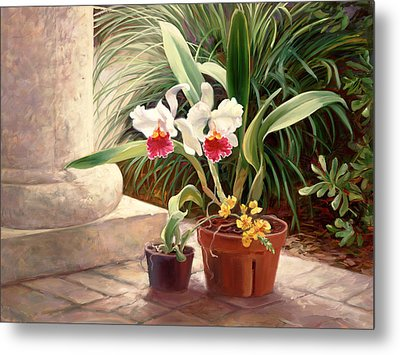 Orchid Duo Metal Print by Laurie Hein