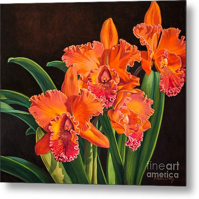Orchid Fever 4 Volcano Queen 1 Metal Print by Fiona Craig