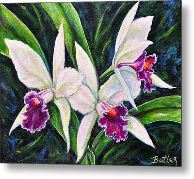 Orchids Metal Print by Gail Butler
