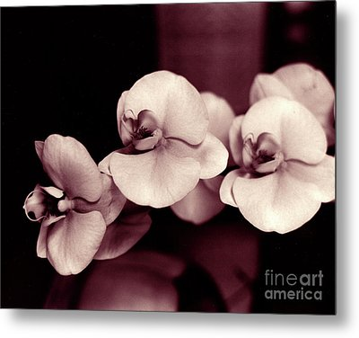 Metal Print featuring the photograph Orchids Hawaii by Mukta Gupta