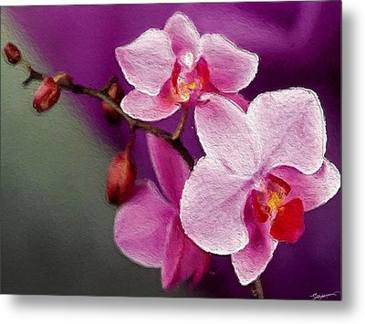 Orchids In Violets Metal Print by Anthony Fishburne