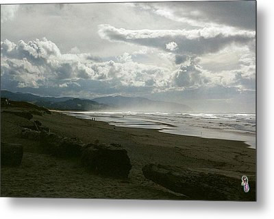 Oregon Coast 10 Metal Print