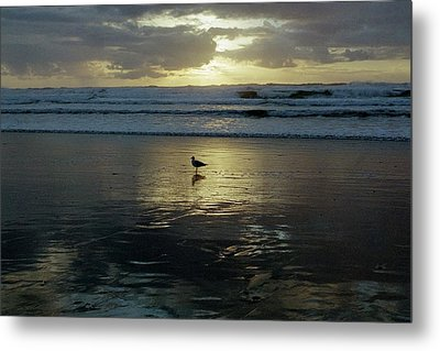 Oregon Coast 3 Metal Print