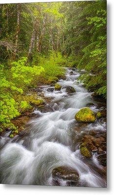 Oregon Creek Metal Print