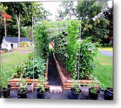 Organic Vegetable Garden 1 Metal Print