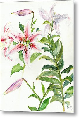 Metal Print featuring the painting Oriental Lily Mona Lisa Liliaceae by Sandra Phryce-Jones