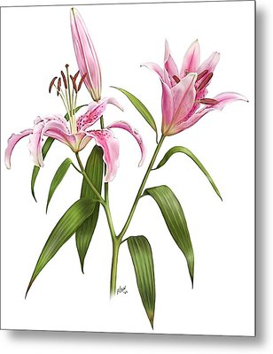 Oriental Lily Stargazer Metal Print by Artellus Artworks
