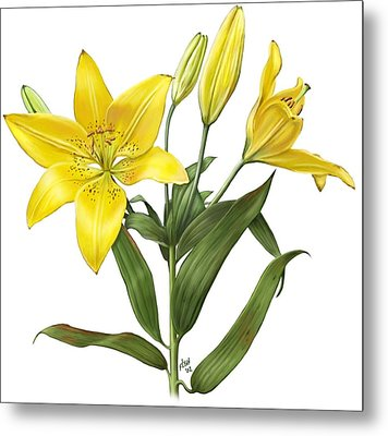 Oriental Lily Yellow Metal Print by Artellus Artworks