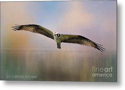 Osprey Over The Shenandoah Metal Print