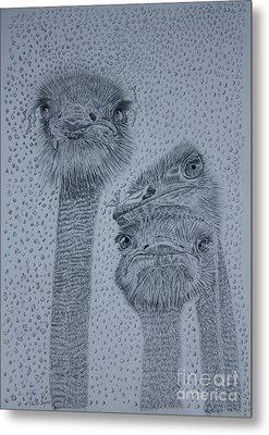 Ostrich Umbrella Metal Print