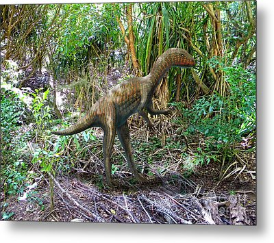 Othiniela In The Forest Metal Print by Frank Wilson