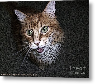 Otis The Orange Kitty Metal Print