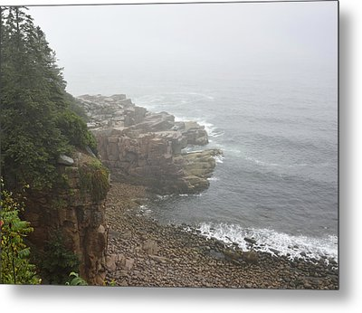 Otter Cliffs - Acadia National Park Maine Metal Print