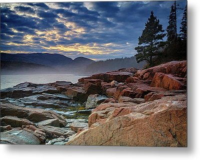 Otter Cove In The Mist Metal Print by Rick Berk