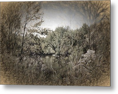 Otter Creek  Metal Print