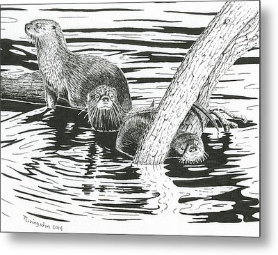 Otters Three Metal Print