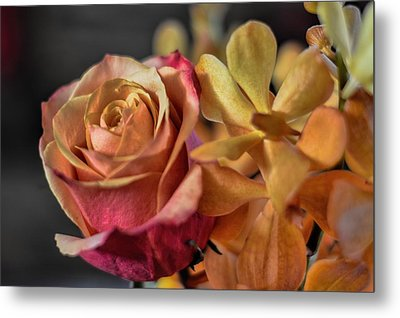 Metal Print featuring the photograph Our Passion by Diana Mary Sharpton