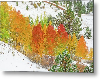 Our Winter Begins Around Mid October.  Metal Print by Bijan Pirnia