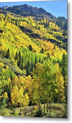 Metal Print featuring the photograph Ouray Canyon Switchbacks by Ray Mathis