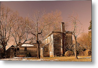 Out Back Metal Print by Patricia Motley