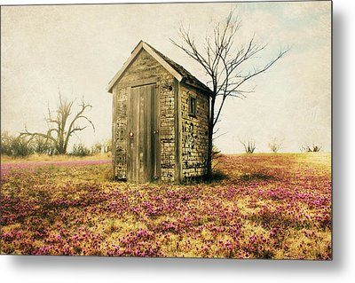 Outhouse Metal Print by Julie Hamilton