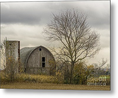 Out In The Country Metal Print by JRP Photography