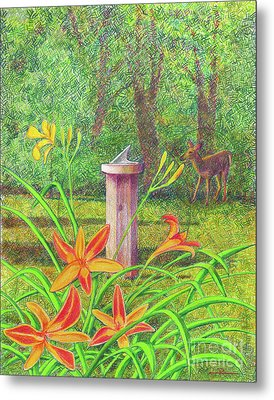 Out My Back Door Metal Print