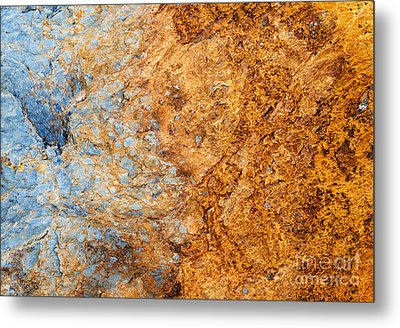 Out Of The Fire Metal Print by Tim Gainey