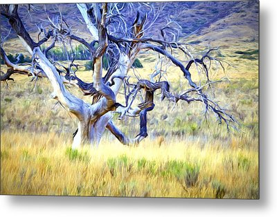 Metal Print featuring the digital art Out Standing In My Field by James Steele