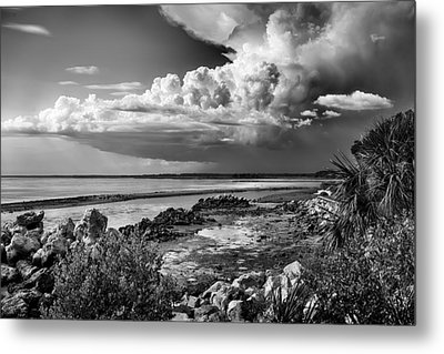 Out To Sea Metal Print by Howard Salmon