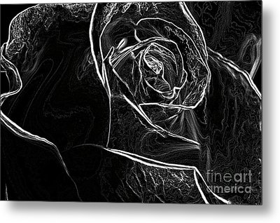 Metal Print featuring the photograph Outline Of A Rose by Micah May