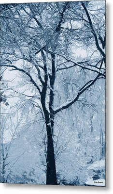 Outside My Window Metal Print by Linda Sannuti