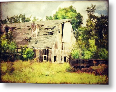 Metal Print featuring the photograph Over Grown by Julie Hamilton