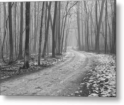 Over River And Through Woods Metal Print by N. Vivienne Shen Photography