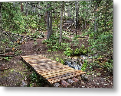 Metal Print featuring the photograph Over The Bridge And Through The Woods by James BO Insogna