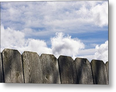 Over The Fence Metal Print by Rebecca Cozart