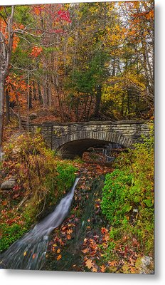 Over The Stream Metal Print by Mark Papke