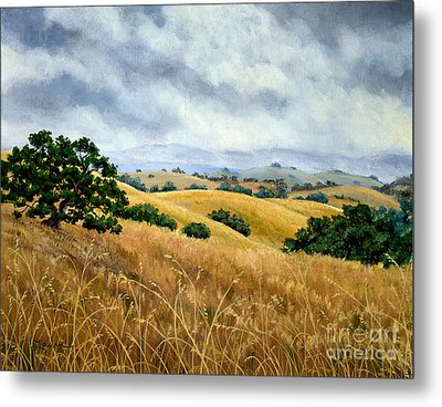 Overcast June Morning Metal Print by Laura Iverson