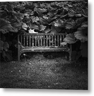 Overgrown Metal Print by Jason Moynihan