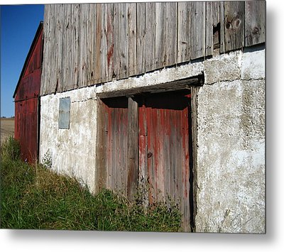 Overgrown Metal Print by Sheryl Burns
