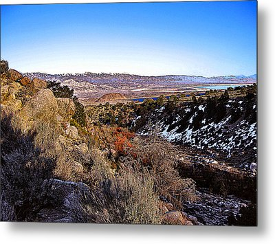 Metal Print featuring the painting Owens Lake Winter by Larry Darnell