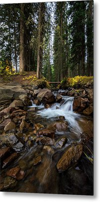 Owl Creek Cathedral Metal Print by Jennifer Grover