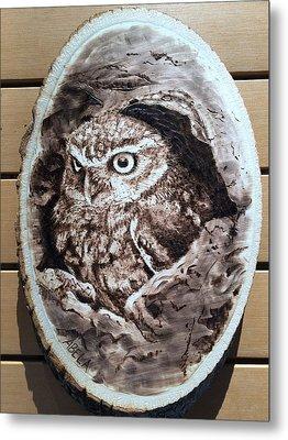 Owl Metal Print by Dominic Abela