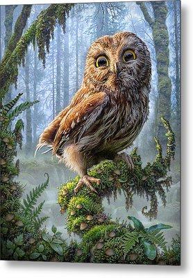 Owl Perch Metal Print by Phil Jaeger