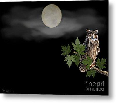 Owl Metal Print by Terri Mills