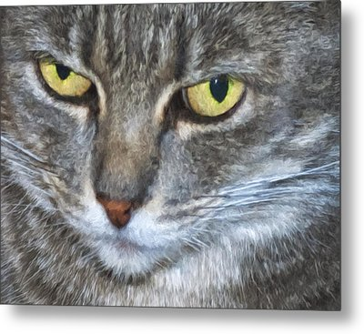 Owlowishes Metal Print by Becky Titus