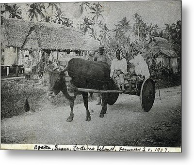 Metal Print featuring the photograph Ox Cart Guam 1907 by eGuam Photo