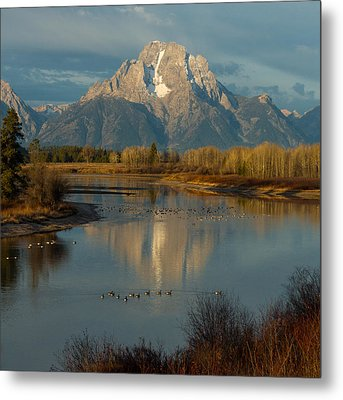 Oxbow Bend Metal Print by Brian Governale